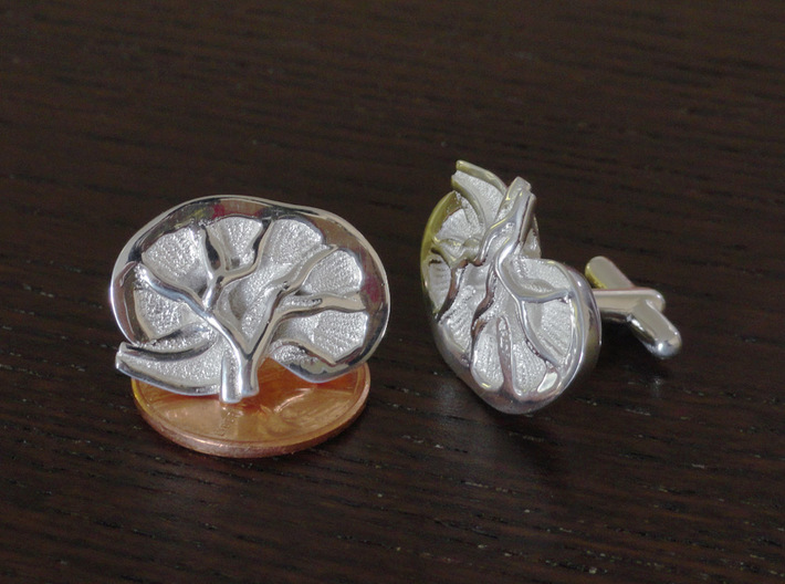 Anatomical Kidney Cufflinks 3d printed For size reference