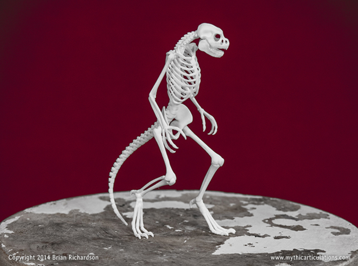 Lizard Man Skeleton 3d printed