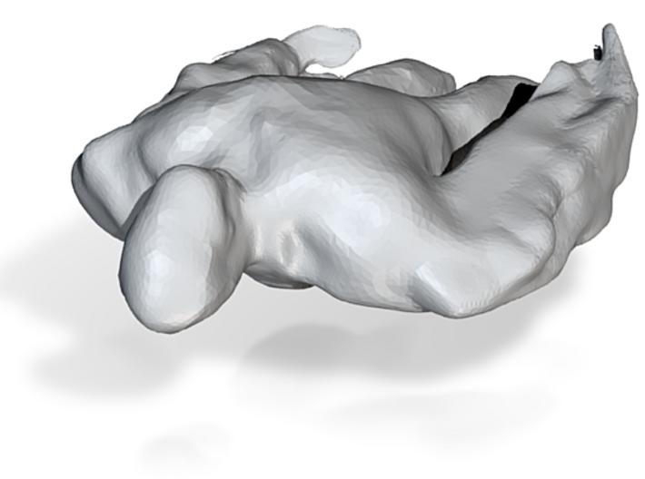 szami figura 2 3d printed