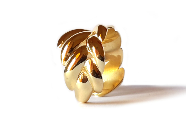 SPIGA ring 3d printed Polished Brass
