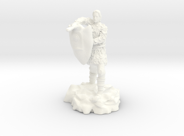 Half-elf fighter in chainmail with Kite Shield 3d printed