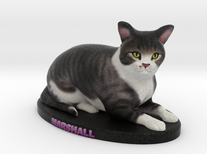 Custom Cat Figurine - Marshall 3d printed