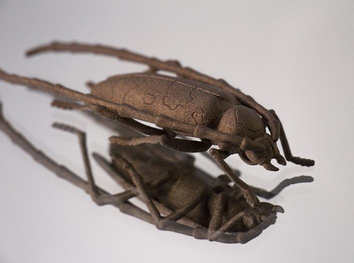 Rosalia bug 3d printed matte bronze steel