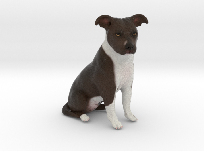 Custom Dog Figurine - Aspen 3d printed
