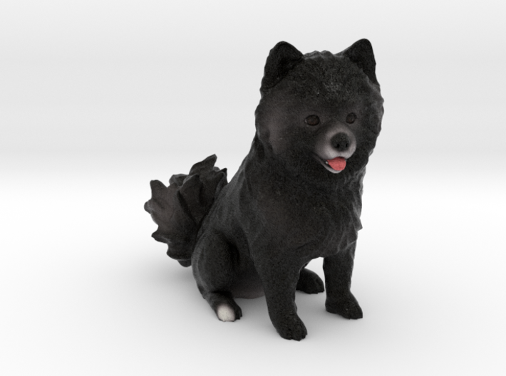 Custom Dog Figurine - Misko 3d printed