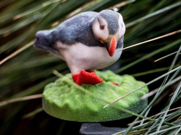 Opinion Puffin meme 3d printed Puffin in the grass