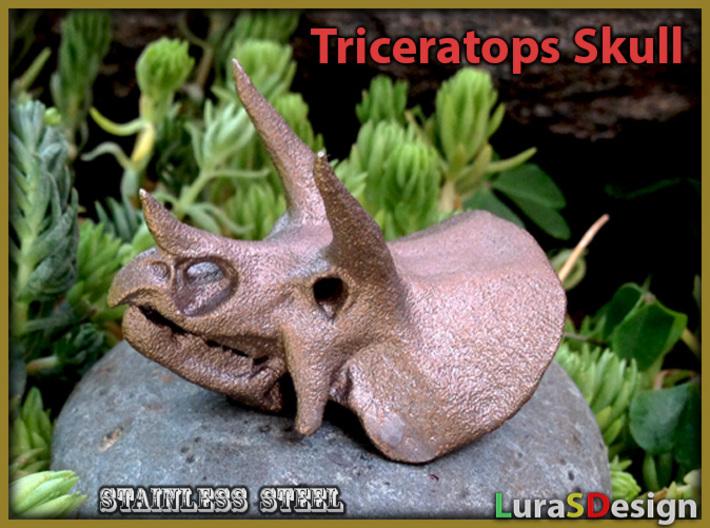 Triceratops Dinosaur Skull Pendant 3d printed older version Bronze Steel print
