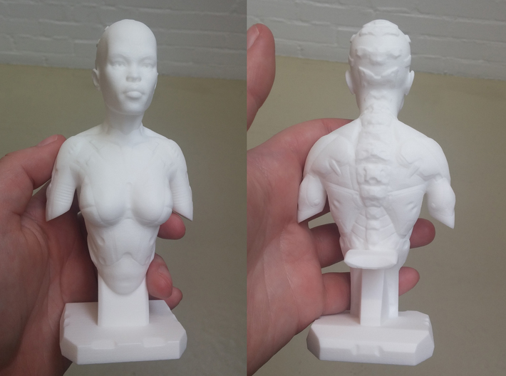 Female Bust Print 001 3d printed First print