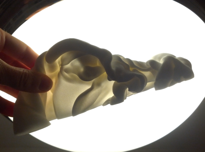 """Triple Fluid Collision, 1/50 3d printed Photograph of smaller prototype; final piece will be almost 12"""" long"""