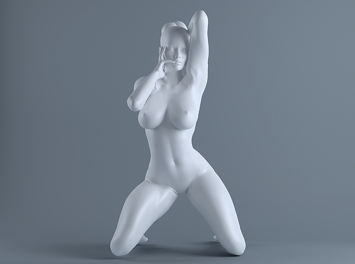 Sexy Girl-016  scale 1/16 Passed 3d printed