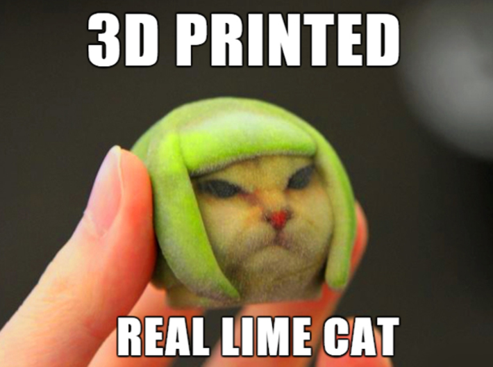 lime cat internet meme uz5lxjy46 by kipiripi