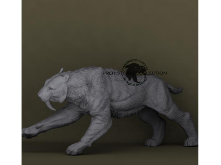 Smilodon populator 3d printed Saber-toothed cat ©2012-2014 RareBreed
