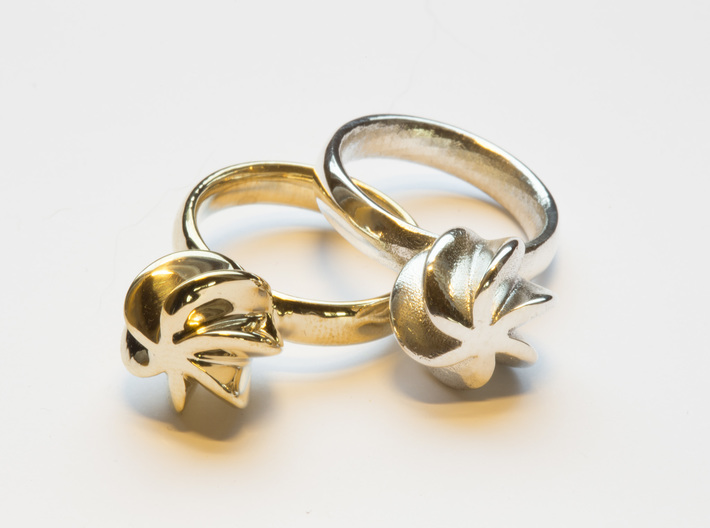 Flora Ring 3d printed The Flora ring in polished brass and polished silver.