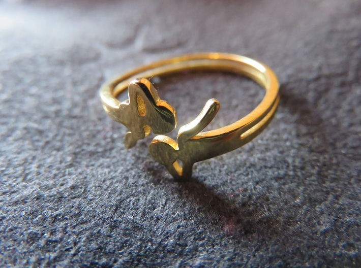 Airy Ring 3d printed