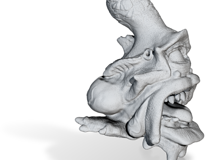Rob Ennis presents: Big Goonch 3d printed An ambush predator with vile habits