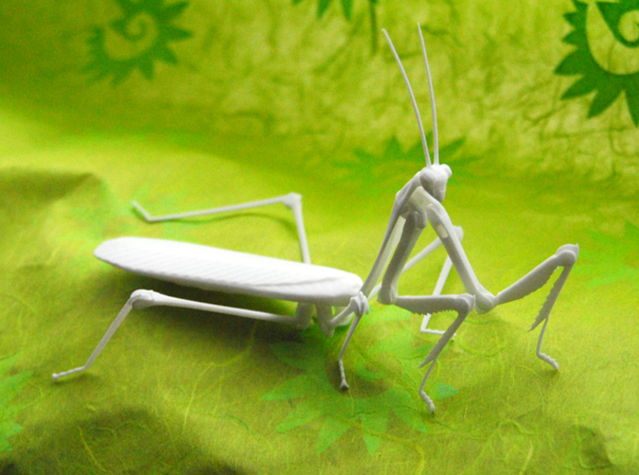 Articulated Mantis 3d printed