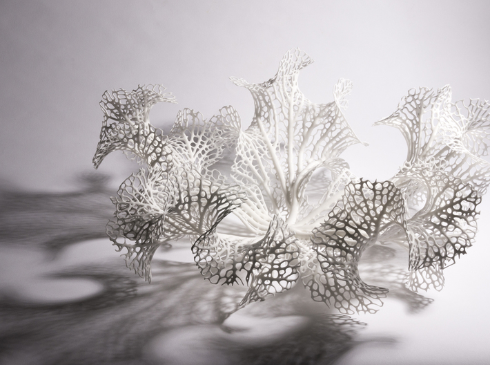 Floraform Sculpture 3d printed