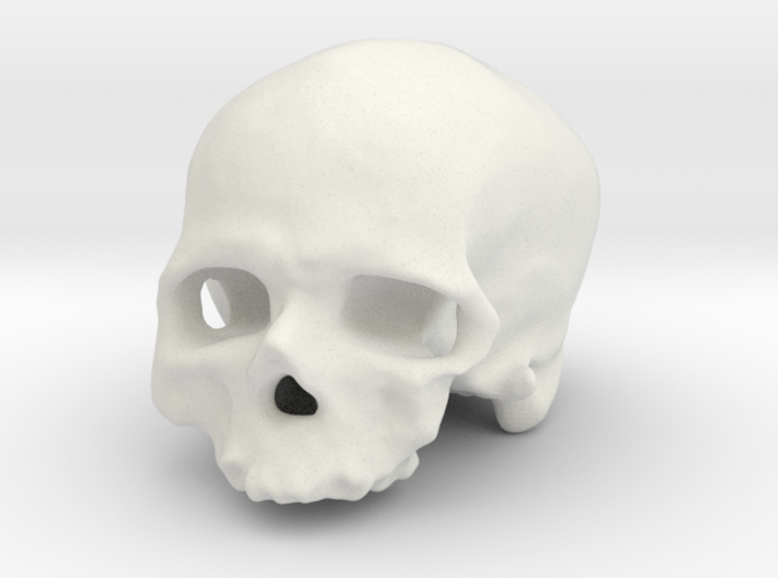 Old man of Crô-Magnon (cranium, real size) 3d printed