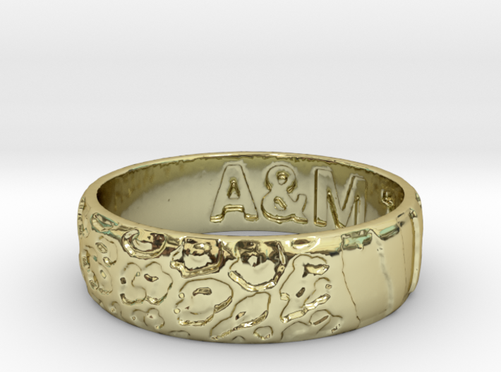 ring am11 3d printed