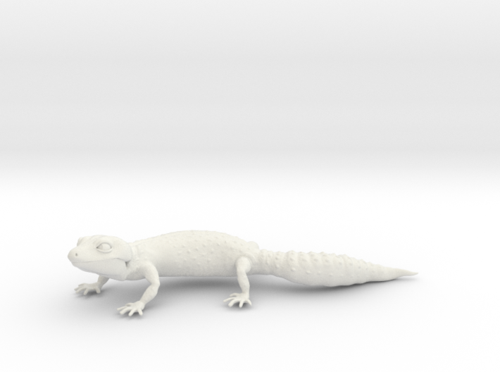 Leopard Gecko 3d printed