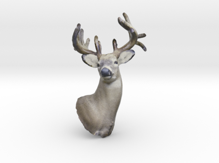 Magical Reindeer 3d printed