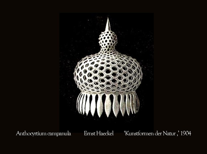Anthocyrtium Radiolarian Pendant 3d printed Ernst Haeckel's drawing of Anthocyrtium