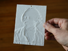 Leonhard Euler Shadowgram 3d printed Photo of the print lit from the front, revealing the relief