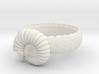 Ammonoidea ring(USA 10,Japan 21, Britain T) 3d printed