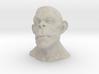 Apeman 3d printed