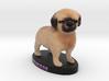 Custom Dog Figurine - Princess 3d printed