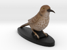 Custom Bird Figurine - Thrasher 3d printed