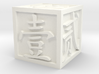 Dice with Number in Traditional Chinese 3d printed