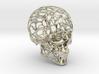 Human Skull - Wireframe design 3d printed