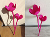 Cherry Blossom 3d printed Pink Strong and Flexible Shapeways