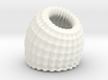 Brain Coral Jewellery Container 3d printed