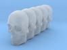 Bsi-skull-human-05mm-jaw 023 3d printed