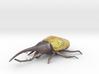 Hercules Beetle Color 3d printed