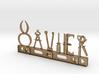 Xavier Nametag 3d printed
