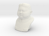 Kim Jong-un bust - smalle version 3d printed