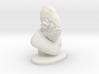 4 Inch Admiral Ackbar Bust 3d printed