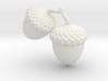 Acorns 3d printed