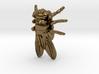 Drosophila Fruit Fly Pendant - Science Jewelry 3d printed