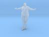 1/32 Fat Man 007 3d printed