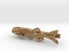 Zebrafish Tie Bar - Science Jewelry 3d printed
