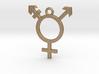 Transgender Pendant 3d printed