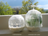 Flexible Mini Greenhouse-Dome Set with Pot (short) 3d printed Flexible Mini Greenhouse-Dome with Pot (Sets short and long). Own 3D-prints with white/transparent PLA.