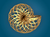 Snail Shell - Wireframe  3d printed 3D Render (back)