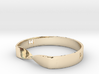 MILOSAURUS Jewelry Mobius Strip Pendant 3d printed