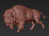 America Bison middle size 3d printed
