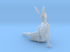 Bunny lady 012 1/24 3d printed